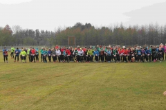 Cross Skrydstrup 2015
