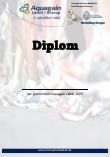 Diplom mini
